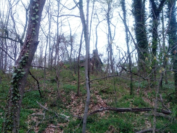 This little house was up on a hill as I left the park. Hard to believe its in the city!